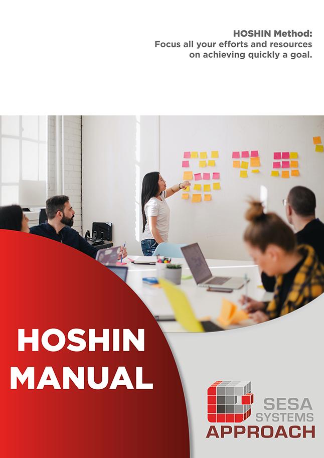 Guía de HOSHIN